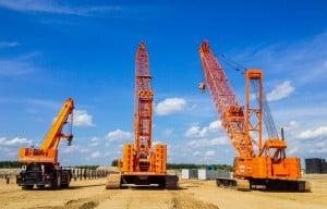 Crane - Sask (2)